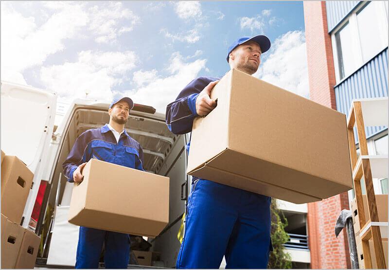 Lieferung & Aufbauservice inklusive